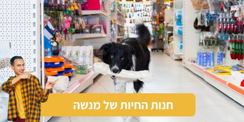 חנות החיות של מנשה